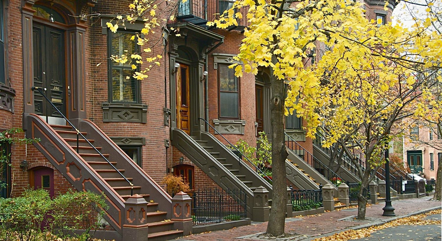Autumn yellow tree-lined sidewalk in front of brownish red brick brownstones