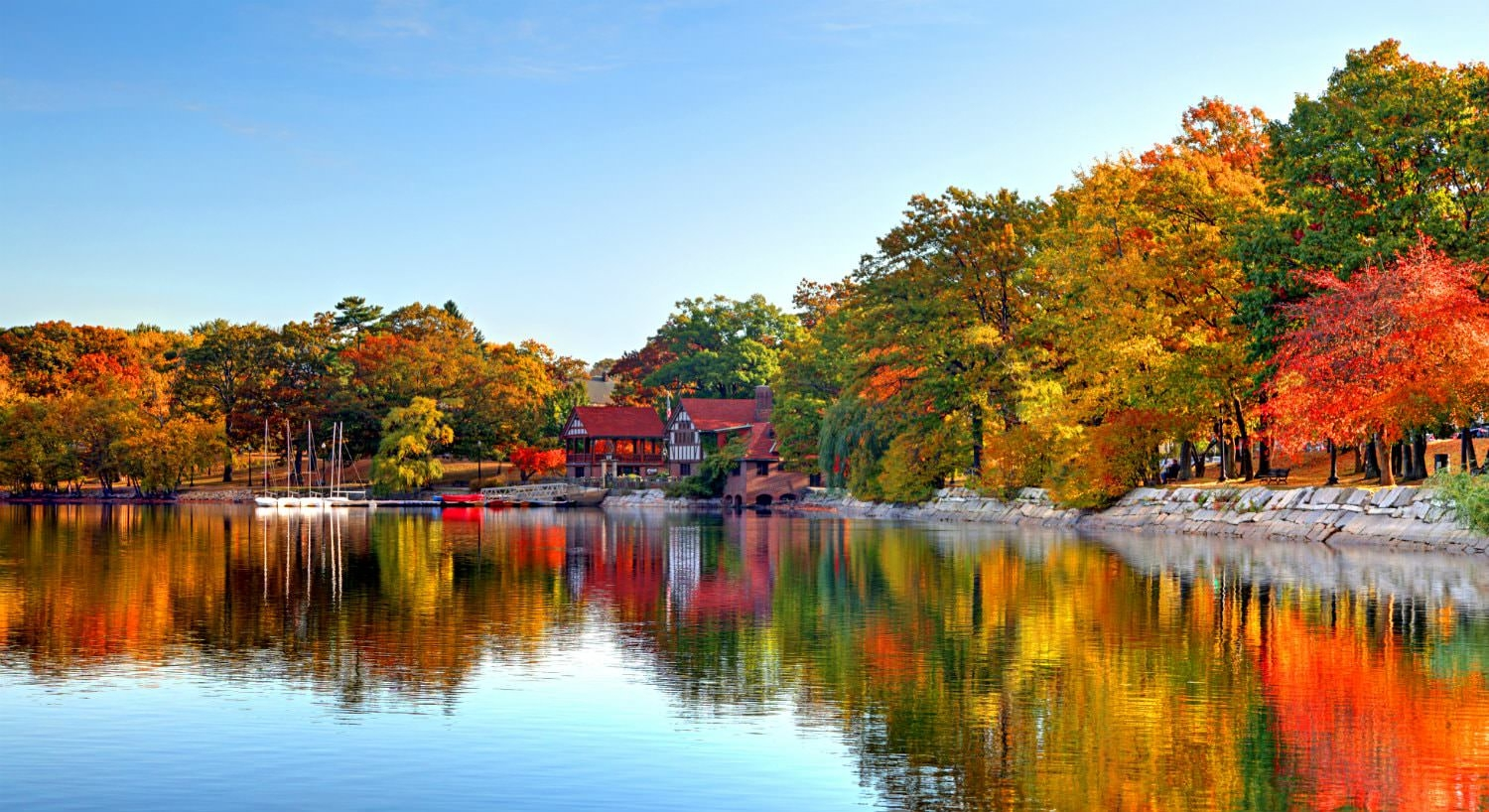 Vibrant trees with green, yelow, orange and red leaves reflected in a body of water against blue skies