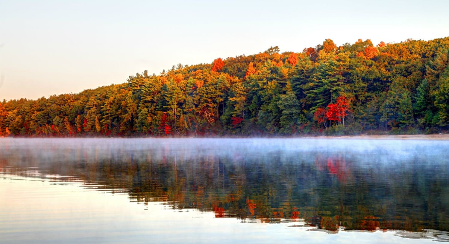 Vibrant trees with green, yelow, orange and red leaves reflected in a body of misty water