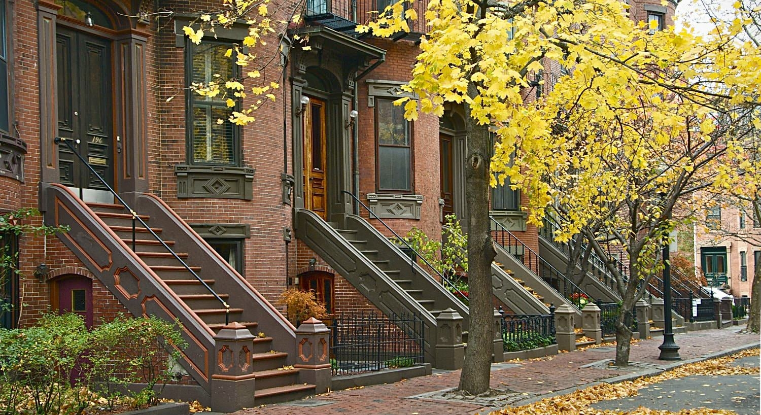 Autumn yellow tree-lined sidewalk in front of reddish brown brick brownstones
