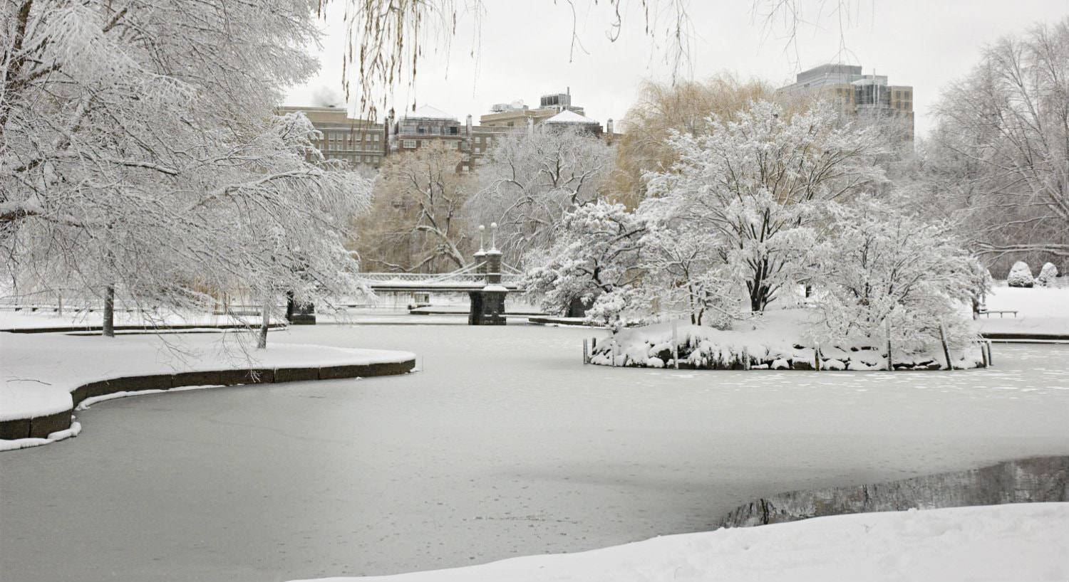 Body of water flowing through a park of trees all covered in white snow