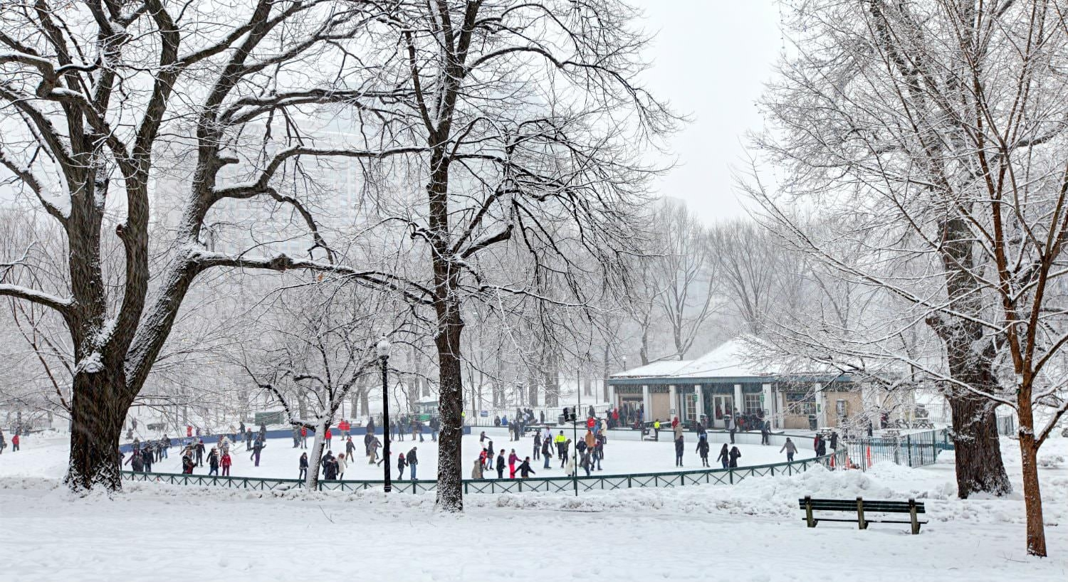 Group of people ice skating in a circular rink in a white snow-covered park surrounded by trees