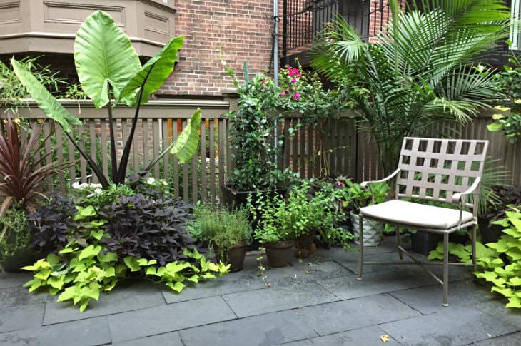 Roof top gray limestone deck covered with plants in various shades of green