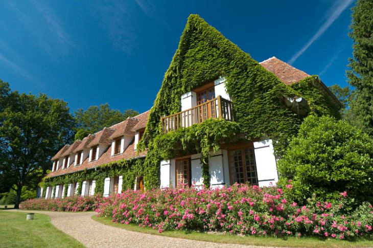 Chateau styled hotel with tiled roof and white shutters covered in vines, surrounded by pink flowering shrubs and blue skies