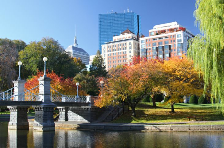Elegant stone bridge leading to a park with fall foliage - buildings and blue skies in the background