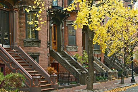 Trees with autumn yellow leaves in front of row of red brick brownstones