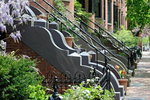 A row of decorative steps and railings leading up to brownstones with lots of green plants
