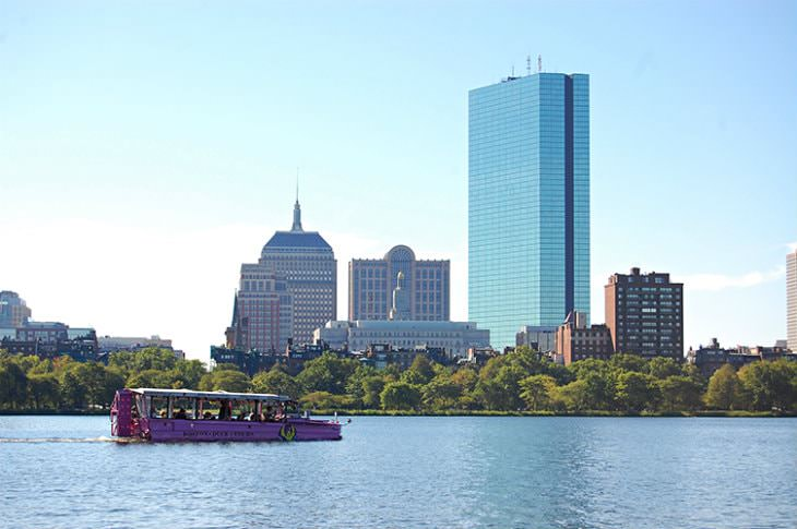 View of pink paddle boat from the water with trees and city buildings in the background